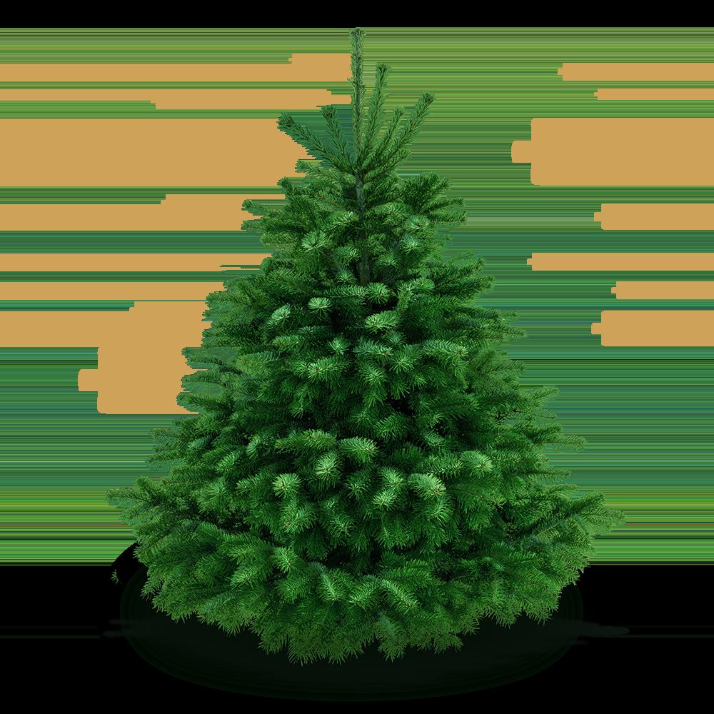 Weihnachtsbaum mit Schneeflocken